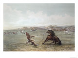 Catching Wild Horses on the Plains Giclee Print by George Catlin