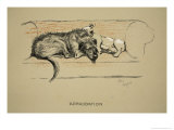 Approbation, 1930, 1st Edition of Sleeping Partners Reproduction procédé giclée par Cecil Aldin