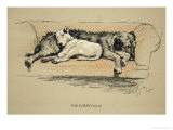 Probation, 1930, 1st Edition of Sleeping Partners Giclee Print by Cecil Aldin