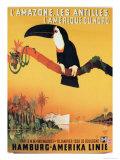 Poster Advertising the Hamburg-Amerika Linie Giclee Print