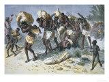 Captured Slave Gang of Coimbra, A Portuguese Mulatto Slaver of Behe, Angola, Africa, Photographic Print