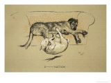 D-Nation, 1930, 1st Edition of Sleeping Partners Reproduction procédé giclée par Cecil Aldin