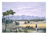 Lynedoch Valley Looking Towards the Barossa Range, South Australia Illustrated, Pub. in 1847 Giclee Print by George French Angas