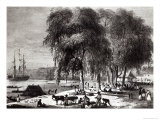 Fish Market, Paramribo, from Voyage a Surinam, 1834 Giclee Print by Pierre J. Benoit