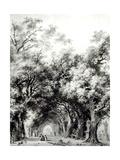 The Shady Alley, c.1773-74 Giclée-Druck von Jean-Honoré Fragonard