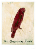 The Crimson Bird, from Sixteen Drawings of Comic Birds Giclee Print by Edward Lear