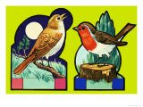 Cut Out Images of a Nightingale and Robin Giclee Print