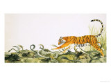 Tiger Running Along the Backs of Buffalo Giclee Print by Kenneth Lilly