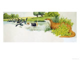 Otter Watches a Dog Chasing Ducks Giclee Print by Kenneth Lilly