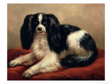King Charles Spaniel Seated on a Red Cushion Gicl&#233;e-Druck von Eugene Joseph Verboeckhoven