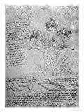 Studies of Violas Giclée-Druck von  Leonardo da Vinci