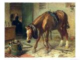 Adversity Giclee Print by Edwin Henry Landseer