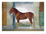 Sala Dei Cavalli, Chestnut Horse from the Stables of Ludovico Gonzaga III of Mantua, 1528 Giclee Print by Giulio Romano