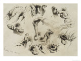 Studies of Masturbation, Plate 40 of 'Liebe Giclee Print by Mihaly von Zichy