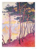 Sailing Boats and Pine Trees, 1896 Gicléetryck av Paul Signac