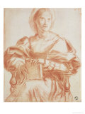 Study of a Seated Woman Holding a Book Lmina gicle por Andrea del Sarto