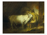 The White Bull in the Stable Reproduction procédé giclée par Jean-Honoré Fragonard