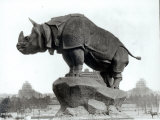Rhinoceros, 1878, by Alfred Jacquemart Photographic Print by Adolphe Giraudon