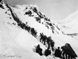Prospectors Climbing the Chilkoot Pass During the Klondike Gold Rush Photographic Print