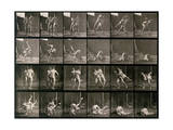 Two Men Wrestling, Plate 348 from Animal Locomotion, 1887 Photographic Print by Eadweard Muybridge