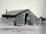 Typical Prairie Sodhouse, Wichita County, Kansas, c.1880 Photographic Print