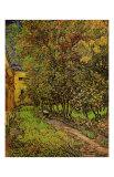 The Garden of Saint-Paul Hospital Kunstdruck von Vincent van Gogh