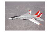 F-14 Tomcat Prints