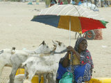 A Somaliland Woman Waits for Customers, in Hargeisa, Somalia September 27, 2006 Photographic Print by Sayyid Azim