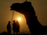 A Camel Stands as Villagers Walk at Sunrise at the Annual Cattle Fair in Pushkar, November 3, 2006 Photographic Print by Rajesh Kumar Singh