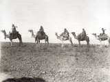 Egyptians on Camels in a Row Photographic Print