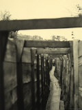 An Italian Communication Trench of World War I in Pobrida Photographic Print