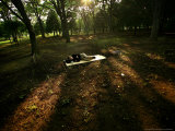 A Japanese Man Naps Among the Trees Inside Tokyo's Yoyogi Park Tuesday, June 27, 2006 Photographic Print by David Guttenfelder