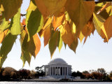Fall Foliage Frames the Jefferson Memorial on the Tidal Basin Near the White House Photographic Print by Ron Edmonds