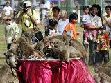 Tourists Gather to Watch Long-Tailed Macaques During an Annual Festival to Honor Them Photographic Print by David Longstreath