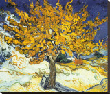 Mulberry Tree, c.1889 Stretched Canvas Print by Vincent van Gogh