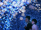 A Couple Goes Through the Sea of Illumination, Tokyo's Business District of Shiodome Dec. 1, 2006 Photographic Print