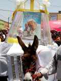 The Residents of Otuma, Mexico Decorate a Donkey with a Popemobile Photographic Print by Marco Ugarte