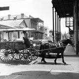 A Horse-Drawn Vegetable Cart Travels Through a Quiet Section of the French Quarter Photographic Print