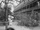 Hurricane Betsy Photographic Print
