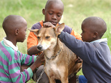Brothers with Their Dog Now Named Mkombozi (Saviour) Photographic Print