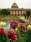 Flowers of the Mughal Gardens Bloom Photographic Print