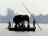 An Elephant is Taken on a Small Boat to a Temple Festival Photographic Print