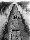 A Trainload of Sandbags is Transported to Line the Mississippi Mainline Levees Photographic Print