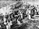 Hundreds of Men, Women, and Children Work to Clear Earth Photographic Print