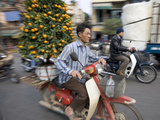 A Vietnamese Vendor Races Down a Street on a Motorbike Carrying a Kumquat Tree for Sale Photographic Print