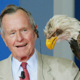 Former U.S President George Bush Looks at an Eagle During the Point Alpha Prize Awarding Ceremony Photographic Print