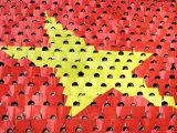 Vietnamese Students Flip Colored Placards Photographie