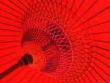 Red Radial, Japan Photographic Print by Shin Terada