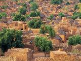 View of the Dogon Village of Songo, Mali Fotografisk tryk af Janis Miglavs