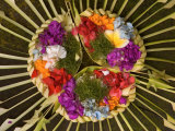 Spiritual Hindu Offerings of Flowers and Palms, Ubud, Bali, Indonesia Photographic Print by Philip Kramer